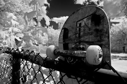 Skateboard (11)