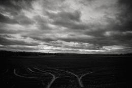 À perte de vue (Sylvain Lussier)