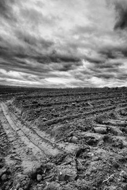 Entre ciel et terre (Stéphane Picard)