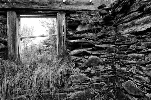 Fenêtre sur les jours (Stéphane Picard)