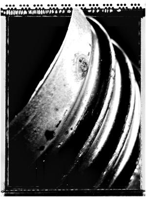 Bulblife (6)
