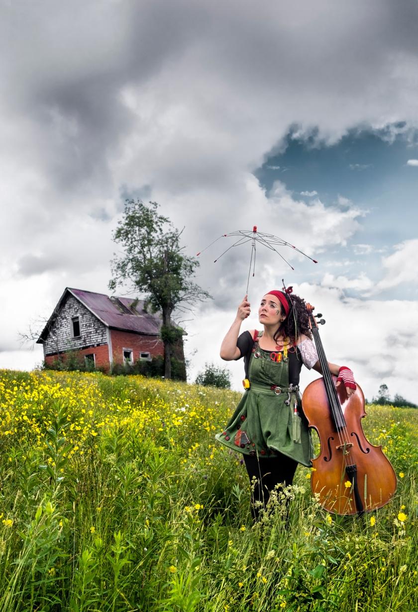 Ariane DesLions a un parcours singulier. Fabricoleuse, auteure-compositrice-interprète basée à Sherbrooke, travailleuse sociale de formation, son projet artistique est porté par la nécessité de prendre la parole en s'adressant aux enfants à travers des thèmes audacieux et rarement abordés dans la chanson jeunesse. La multi-instrumentiste use d'instruments originaux : roukistar (guitare), voix, pelalunch à quatre cordes (ukulélé), violoncelle, cloches, cajon, gougoune o fun, percussions corporelles, soumariflûte et accordéon. Elle lance son premier EP, accompagné du spectacle Ma Quincaillerie Musicale en 2017 et qui sera présenté dans plusieurs provinces du Canada et le la France.